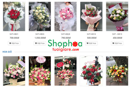 Xin địa chỉ shop hoa tươi quận Tân Bình TP HCM