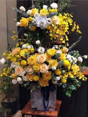Giỏ hoa 2 tầng chúc mừng