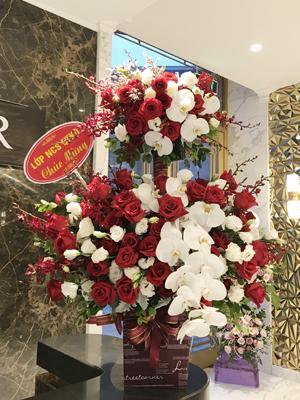 Hoa chúc mừng khai trương màu đỏ