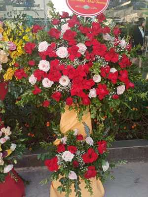 Hoa khai trương hoa hồng đỏ