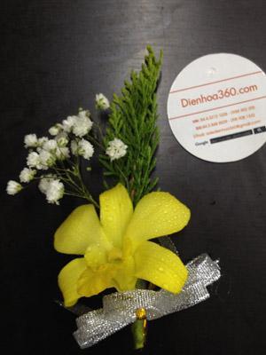 Mẫu hoa cài áo hoa tươi