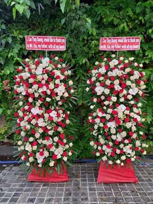 Mẫu hoa khai trương hoa hồng