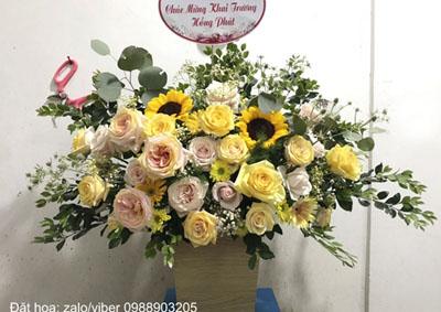 Bạn gửi hoa gì khi đặt hoa khai trương?