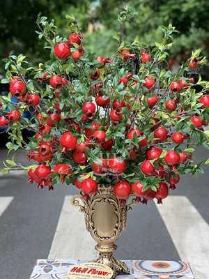 Bình quả lựu đỏ đẹp nhất