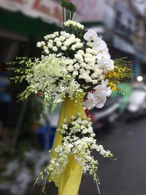 Hoa chúc mừng màu trắng