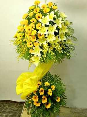 Hoa khai trương màu vàng đẹp