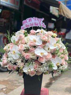 Hoa sinh nhật đẹp giá rẻ