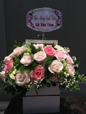 Hoa tươi giá rẻ
