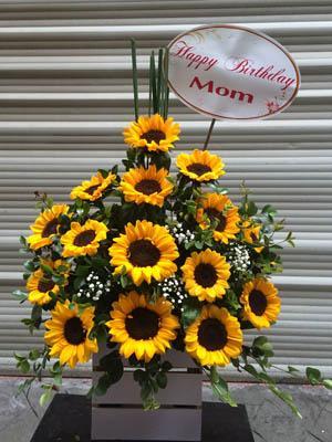 Shop hoa tươi hoa hướng dương