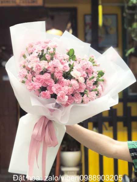 Hoa tặng cung Nhân Mã là hoa gì? Mẫu hoa 12 cung hoàng đạo